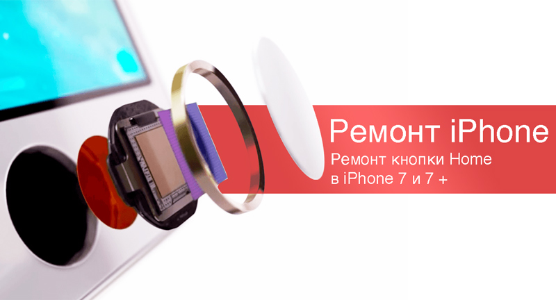 Кнопка Home в iPhone 7 и  iPhone 8 замене не подлежит