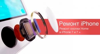 Есть решение! Кнопку Home в iPhone 7 и 8 теперь можно заменить
